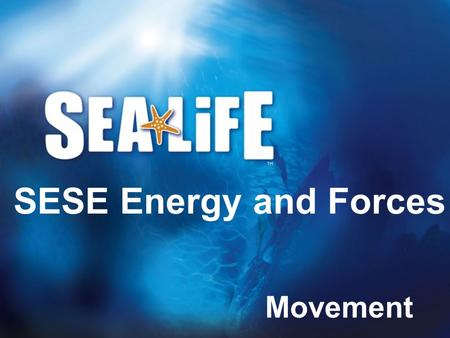 SESE Energy and Forces Movement.
