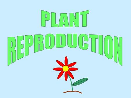  Plants have male and female sex cells just like animals.  They reproduce to form seeds inside fruit.  Reproduction consists of pollination, fertilisation,