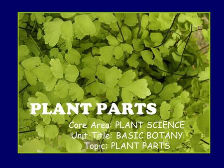 Core Area: PLANT SCIENCE Unit Title: BASIC BOTANY Topic: PLANT PARTS PLANT PARTS.