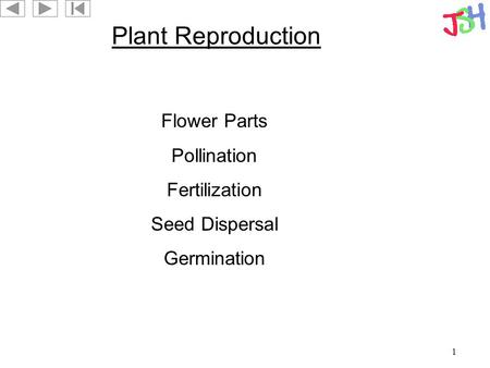 1 Plant Reproduction Flower Parts Pollination Fertilization Seed Dispersal Germination.