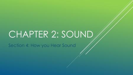 CHAPTER 2: SOUND Section 4: How you Hear Sound. Discover Activity: Where is Sound Coming From? 1. Ask your partner to sit on a chair, with eyes closed.