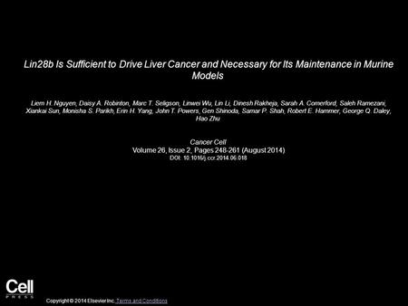 Lin28b Is Sufficient to Drive Liver Cancer and Necessary for Its Maintenance in Murine Models Liem H. Nguyen, Daisy A. Robinton, Marc T. Seligson, Linwei.