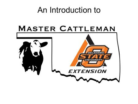 An Introduction to. The OSU Master Cattleman program is… A comprehensive educational curriculum for beef cattle producers with opportunities for continuing.