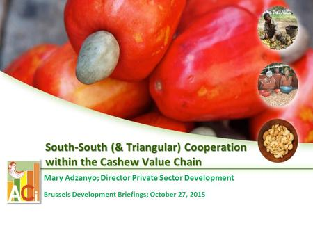 South-South (& Triangular) Cooperation within the Cashew Value Chain Mary Adzanyo; Director Private Sector Development Brussels Development Briefings;