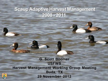 G. Scott Boomer USFWS Harvest Management Working Group Meeting Buda, TX 29 November 2012.