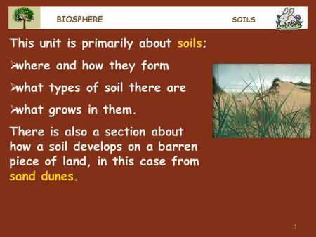 1 BIOSPHERE SOILS This unit is primarily about soils;  where and how they form  what types of soil there are  what grows in them. There is also a section.