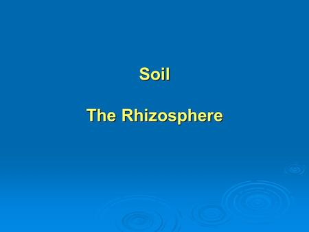 Soil The Rhizosphere. Four distinct components of soil: Four distinct components of soil: inorganic mineral particles inorganic mineral particles water.