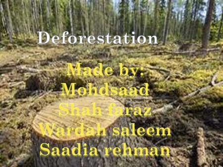 The destruction of natural forests because of cutting trees, logging, making space for cattle grazing, mining, extraction of oil, building dams and.