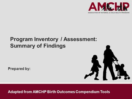 Prepared by: Program Inventory / Assessment: Summary of Findings Adapted from AMCHP Birth Outcomes Compendium Tools.