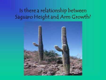 Is there a relationship between Saguaro Height and Arm Growth?