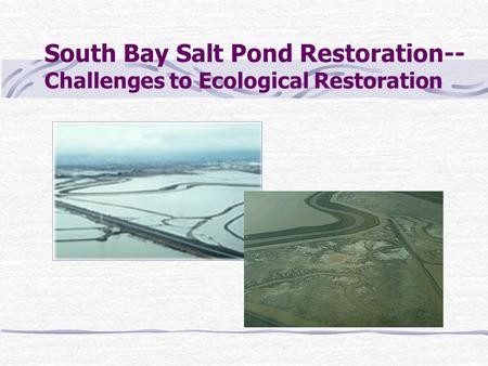 South Bay Salt Pond Restoration-- Challenges to Ecological Restoration.