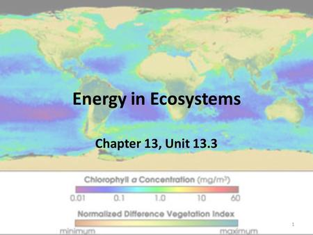 Energy in Ecosystems Chapter 13, Unit 13.3 1. Objectives To describe the roles of producers and consumers in ecosystems. To apply the concept of producers.