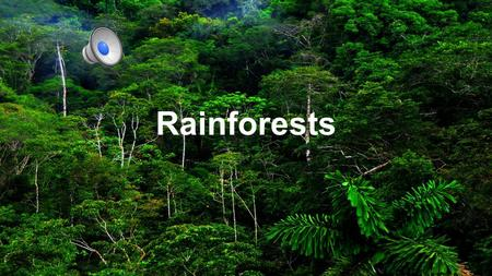 Rainforests Picture a world without oxygen, water or medicine.