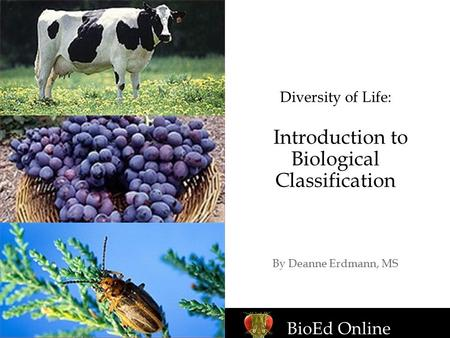 Diversity of Life: Introduction to Biological Classification By Deanne Erdmann, MS BioEd Online.