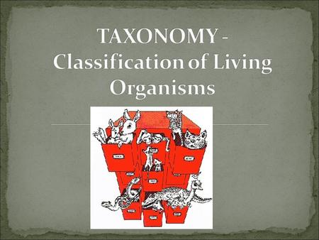 Taxonomy is the science of classifying groups of organisms based on their characteristics. Our taxonomic system was developed by Swedish botanist Carolus.