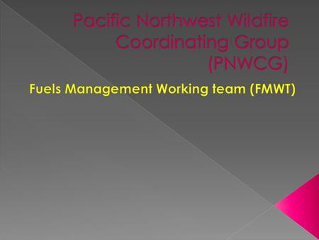 MISSION The mission of the Fuels Management Working Team (FMWT) is to meet the intent of the National Fire Plan (NFP) using a collaborative multi-level.