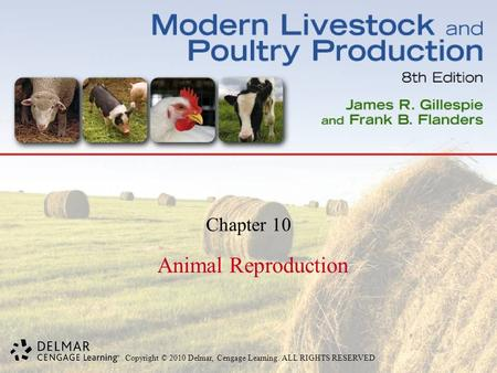 Copyright © 2010 Delmar, Cengage Learning. ALL RIGHTS RESERVED. Chapter 10 Animal Reproduction.
