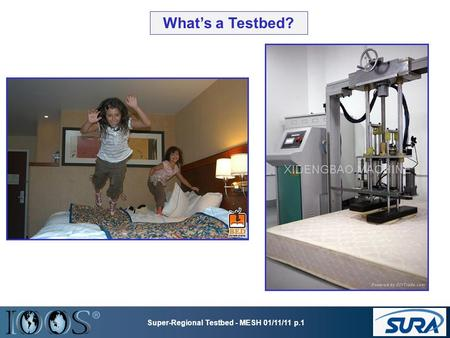 What's a Testbed? Super-Regional Testbed - MESH 01/11/11 p.1.