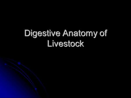Digestive Anatomy of Livestock
