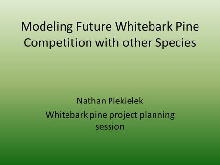 Modeling Future Whitebark Pine Competition with other Species Nathan Piekielek Whitebark pine project planning session.