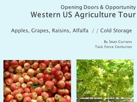 Apples, Grapes, Raisins, Alfalfa / / Cold Storage By Sean Currans Task Force Centurion.