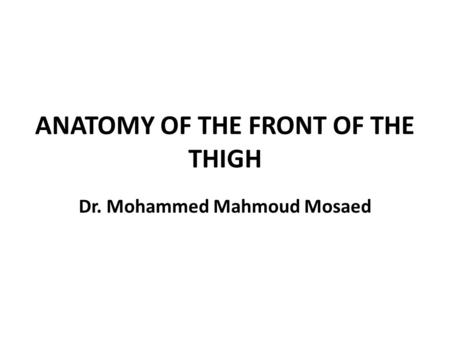 ANATOMY OF THE FRONT OF THE THIGH
