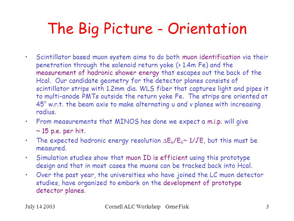 July 14 2003Cornell ALC Workshop Gene Fisk4 50 GeV  - event 11 run 0 EyeFish View-18 hits in Muon Detector