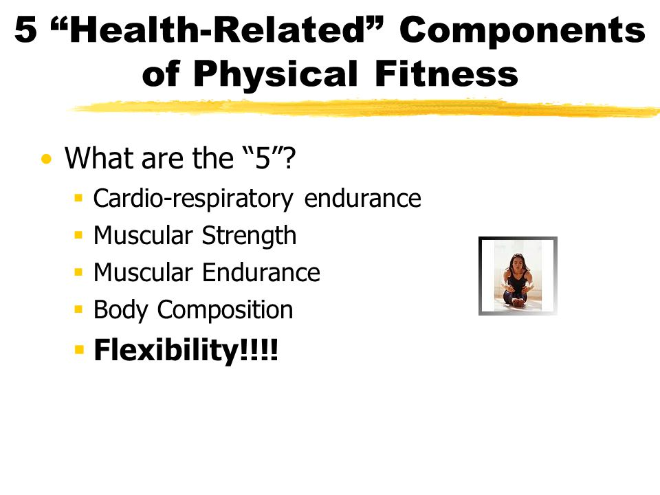 Introduction to Flexibility What is Flexibility.