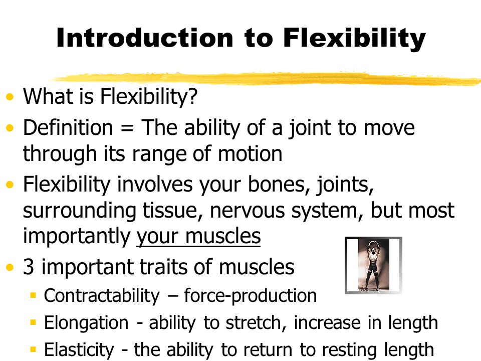 Introduction to Flexibility Flexibility is highly adaptable, and is increased through stretching exercises.