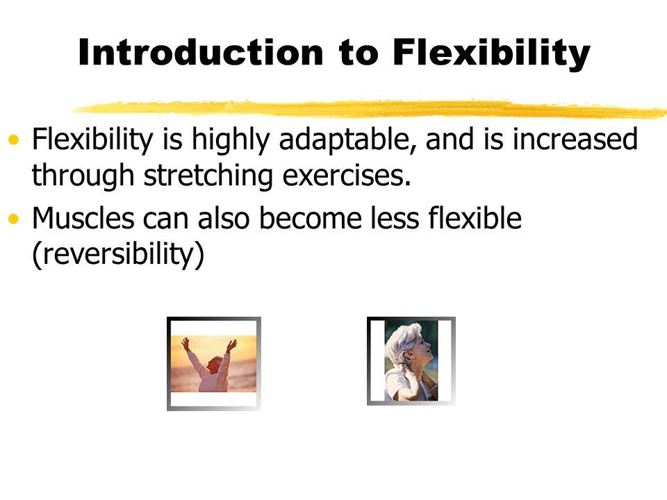 Types of Flexibility.Static Flexibility.