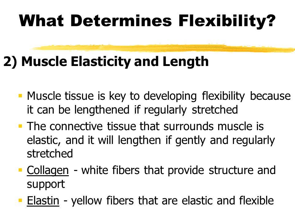 What Determines Flexibility.