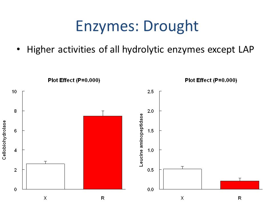 Enzymes: N addition Higher LAP in fertilized litter; other effects are weak