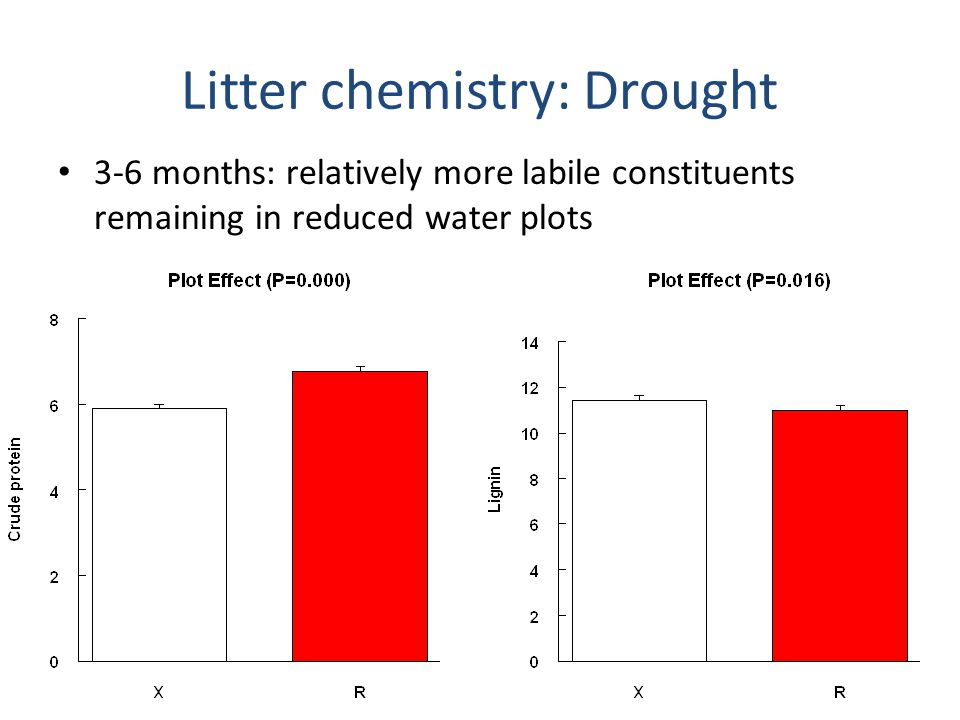 Litter chemistry: N addition Greater lignin loss in litter from N plots (6 months)