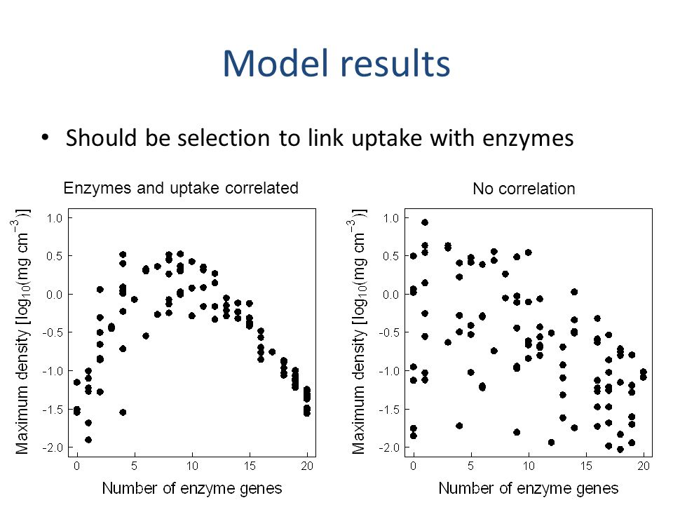 Model results Species interactions are present but vary by taxon and model conditions