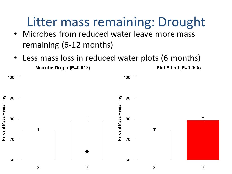 Litter mass remaining: N addition Significant plot by litter interactions that differ at 6 vs.