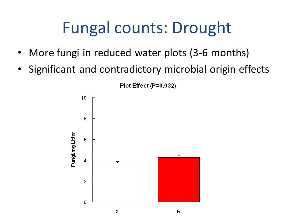 Bacterial counts: Drought Strong negative effects of reduced water; microbial origin effect disappears by 6 months