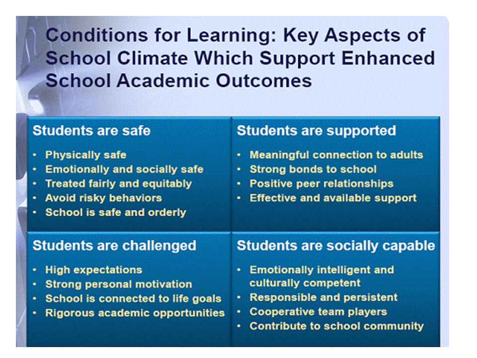 What are the factors that influence school climate? Positives: Negatives: