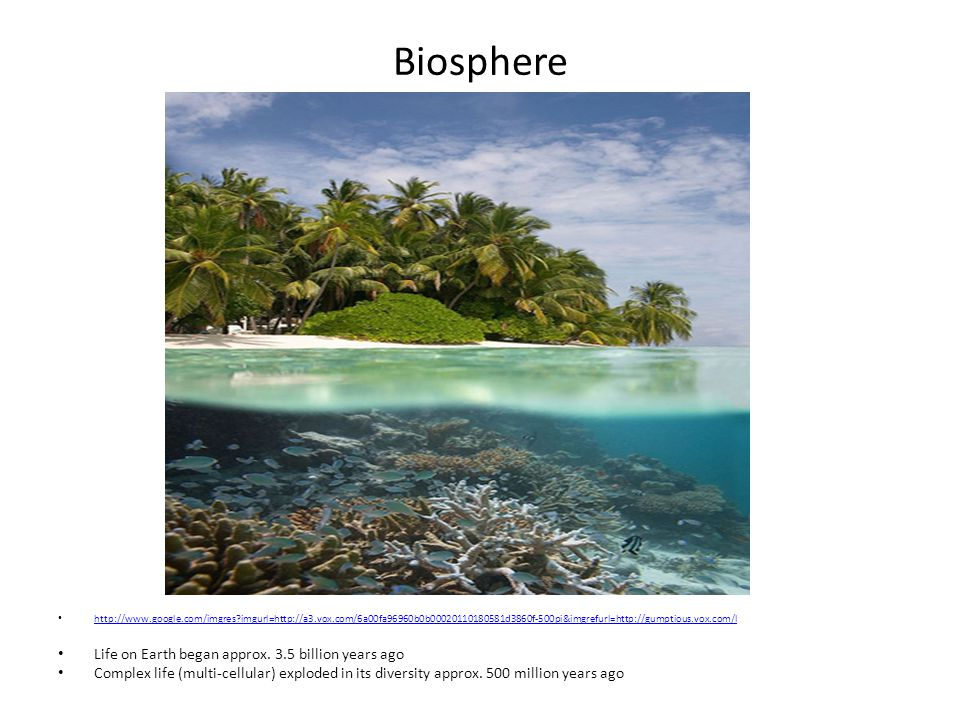 Biosphere continued Human population is currently approx.