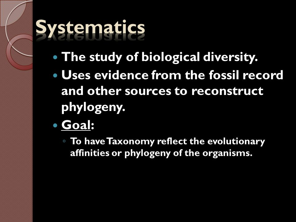 Areas of Systematics 1.Phylogeny- tracing of evolutionary relationships 2.