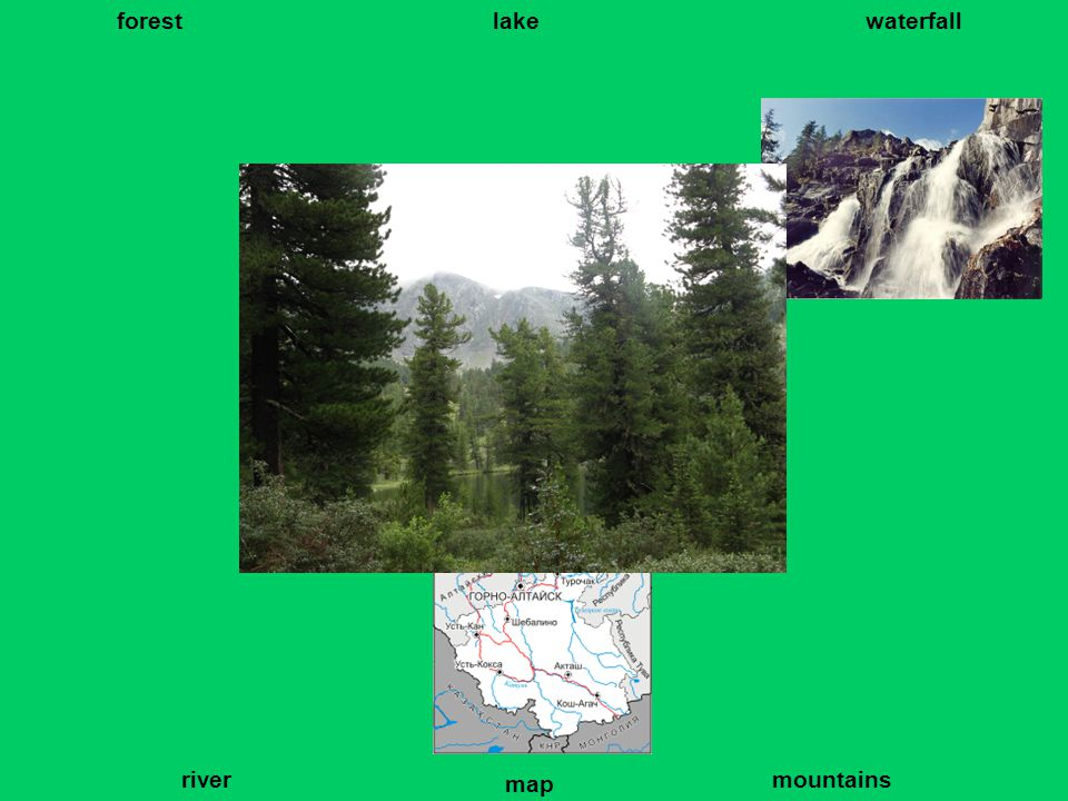 forest lakewaterfall river map mountains