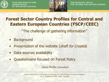 "Timber Committee ""Capacity Building for Information Exchange on Forest Policies in Caucasus Region"" 18-21 September 2006, Tbilisi, Georgia Forest Sector."
