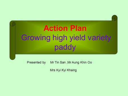 Action Plan Growing high yield variety paddy Presented by Mr Tin San,Mr Aung Khin Oo Mrs Kyi Kyi Khaing.