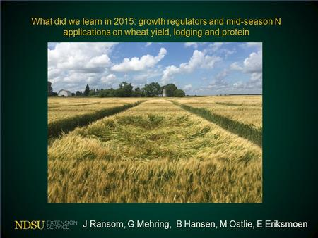What did we learn in 2015: growth regulators and mid-season N applications on wheat yield, lodging and protein J Ransom, G Mehring, B Hansen, M Ostlie,