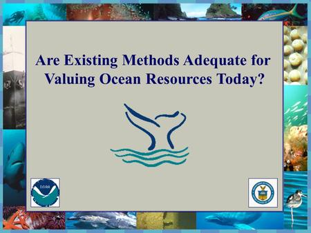 The National Marine Sanctuary Program Are Existing Methods Adequate for Valuing Ocean Resources Today?