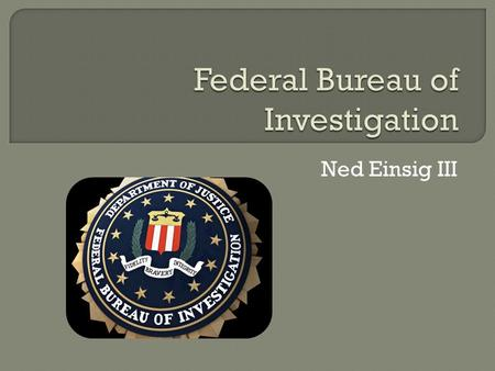 Ned Einsig III.  Domestic Intelligence & Security Service of the United States  Prime Federal Law Enforcement Organization  Jurisdiction on over 200.