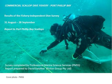 Scallop Dive (Port Phillip Bay) Fishery Cover photo - PMSS COMMERCIAL SCALLOP DIVE FISHERY - PORT PHILLIP BAY Results of the Fishery-Independent Dive Survey.