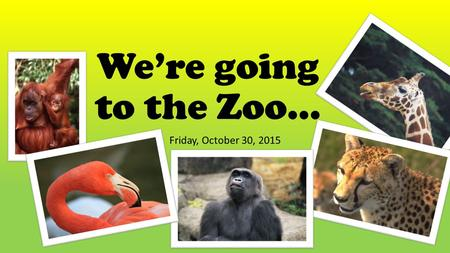 We're going to the Zoo… Friday, October 30, 2015.
