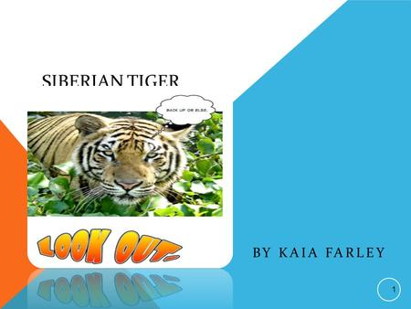 SIBERIAN TIGER BY KAIA FARLEY 1 THIS STORY IS DEDICATED TO: My family because they're nice and funny. Nice and funny= awesome family 2.