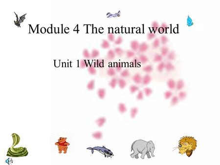 Module 4 The natural world Unit 1 Wild animals.