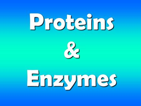 Proteins & Enzymes. What are proteins? Large organic molecules Always contain nitrogen Essential to the structure and function of living things Made up.